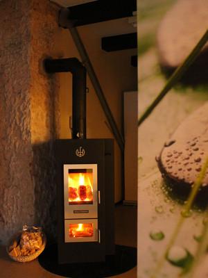 walltherm termostufa a legna